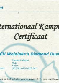 International Champion certificaat Diamond Dust