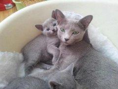 fiona_als_trotse_moeder_klein
