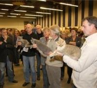 Show in Groningen 2008