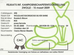 1ste_cac_silver_klein_formaat