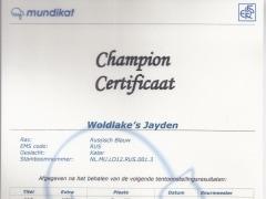 championscertificaat Jayden.jpg