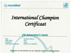 Internationaal kampioens certificaat Anarrima's Izzie.jpeg