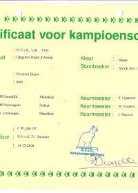 Kampioens certificaat Djagilevs Ruses d'Amour.jpg