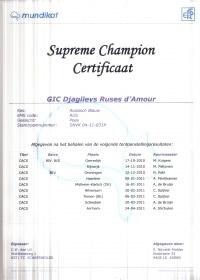 Supreme Champion certificaat Djagilevs Ruses d'Amour.jpg