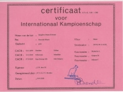 Internationaal Kampion certificaat Djagilevs Ruses d'AmourAnna.jpg