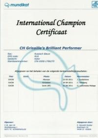 IC certificaat Brilliant.jpg