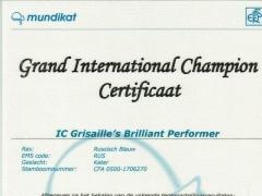 Grand International Champion certificaat Brilliant.jpg