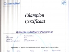 Champion certificaat Brilliant.jpg