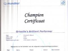 Champion certificaat Brilliant.jpg