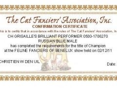 occ10704 CFA certificaat Champion klein.jpg