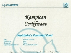 Champion certificaat Diamond Dust.jpeg