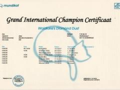 Groot Internationaal Kampioen certificaat