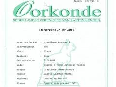 Oorkonde Show Dordrecht.jpg.jpeg