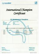 International Kampioens certficaat Nindaranna Fearghus