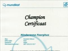 Kampioens certificaat Nindaranna Fearghus