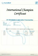 International Champion certificaat Fr..jpg