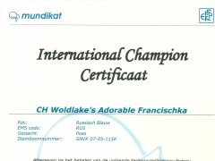 International Champion certificaat Fr..jpg