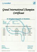 Groot Internationaal Kampioencertificaat Graciella.jpeg