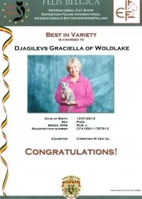 Best in Varieteit Djagilevs Graciella 2-3-2014.jpg