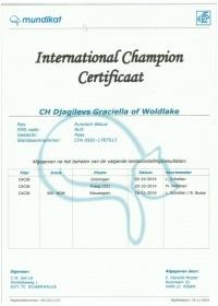 International Champien certificaat Djagilevs Graciella.jpeg