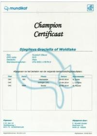 Kampioens certificaat Djagilevs Graciella of Woldlake.jpeg