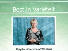 Best in Varieteit Djagilevs Graciella 18-5-2014.jpg