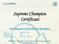 Certificaat Supreme Champion.jpeg
