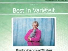 Best in Varieteir Djagilevs Graciella 12-1-2014.jpg