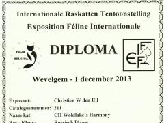 1ste CACIB certificaat 1-12-2013.jpg