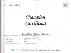 Certificaat Champion Fife.jpg