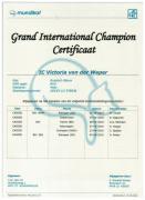 Groot Internationaal Kampioenscertificaat Victoria.jpg.jpeg