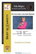 Best in Varieteit Victoria von der Weper 8-3-2015.jpg