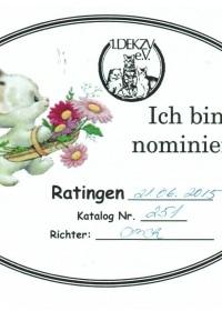Bewijs van nominatie BIS 21-6-2015.jpeg