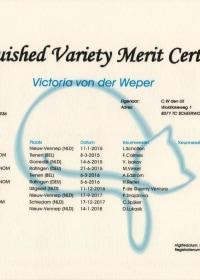 DVM Certificaat