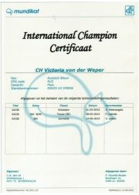 Internationaal kampioen certificaat Victoria von der Weper.jpeg