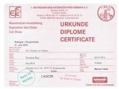 1ste certificaat CAGCIB 21-6-2015.jpeg