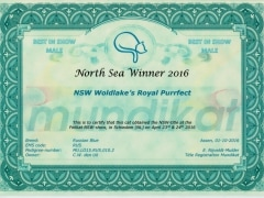 North Sea Winner certificaat.jpeg