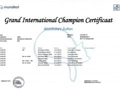 Groot Internationaal Kampioenscertificaat