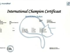 International Champion