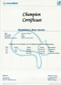 Champion certificaat Xavier.jpg