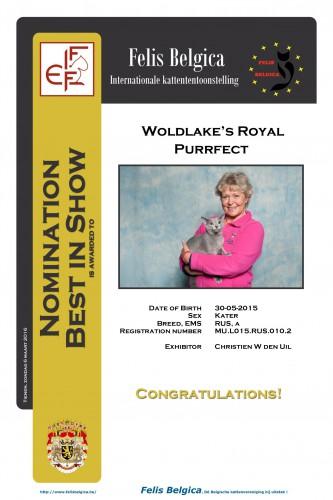 Woldlake's Royal Purrfect werd genomineerd