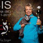 Felis Belgica show 19 november 2017